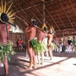 Foto de Amazon Ecopark Jungle Lodge