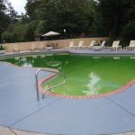 Nice pool but the algae bloom needs to be cleaned up.