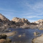 Water at Barker Dam, Joshua Tree National Park