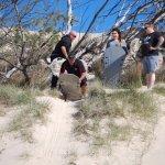 sandboarding time