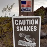 WATCH OUT FOR SNAKES1