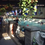Nice indoor pools for year round fun