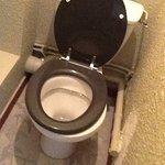 Ch. minuscule, pas de salle de bain : cabinet de toilette de moins d'1m2 d'espace sans prise cou