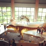 Photo of National Museum of Natural Science
