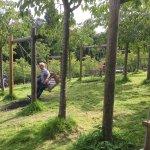 The Alnwick Garden Photo