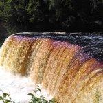 Tahquamenon Falls State Park Photo