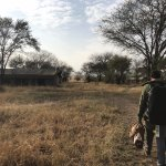 Foto de Olakira Camp, Asilia Africa