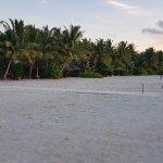 Staff cricket on the beach at sunset