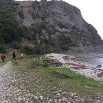 Kaikoura Peninsula Walkway Foto