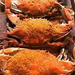 Foto de Buddy's Crabs and Ribs
