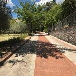 Photo of Assisi Garden