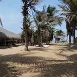 Photo of Dolphin Beach Resort