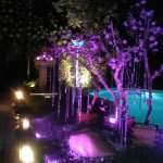 Photo of Thai Garden 2112