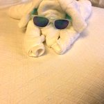 Cute towel animals