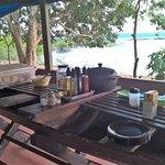 Anaconda Amazon Island Photo