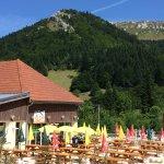 Le conducteur peut tranquillement profiter de la beauté des Alpes