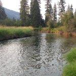 Foto de Kootenai River Outfitters
