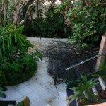 Photo de Paraiso Tropical