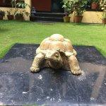 Photo de Planet Bhaktapur Hotel
