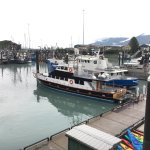Lu Lu Belle Glacier Wildlife Cruises Photo