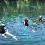 Free time swimming in the cenote