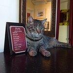 Captain Brinley! (with drink menu)
