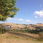 Photo of Agriturismo Vecchio Gelso