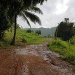 صورة فوتوغرافية لـ بامبو كنتري لودج