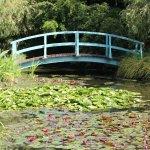 The beautiful Monet bridge