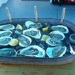 Oysters on the RiverTripper