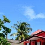 Zdjęcie Paradise Vacation Hotel