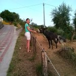 Foto de Agriturismo il Pillone