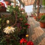 Photo of Seine Boat Inn
