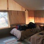 Zdjęcie Porini Lion Camp