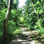 Destiny Kinal River Loop Trail