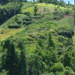 Photo of Maesalong Mountain Home