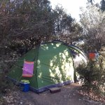 Photo de Camping Caravaning Rondinara