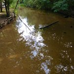 Sandy creek, a small shallow creek that runs through the camp. There were a lot of small childre