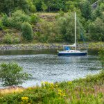 On the banks of the loch