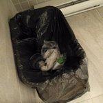 Leftover garbage