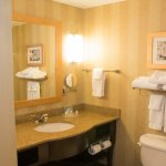 Photo of Holiday Inn St. Louis-Fairview Heights