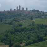 Foto de Wine Tour in Tuscany