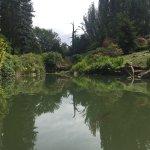 Photo of Kubota Garden