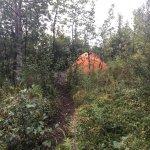 Photo of Wonder Lake Campground