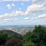 View from the Königstuhl (top of the mountain)