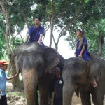 Photo of Baanchang Elephant Park - Private Day Tours
