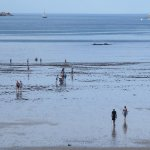 Photo of Ibis Saint Malo Plage