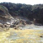 Photo of Riserva Naturale di Tor Caldara