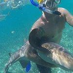 Alfonse With A Nurse Shark