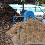Coconut processing factory